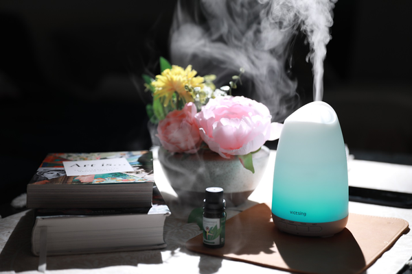 Perks Of The Everlasting Comfort Cool Mist Humidifier